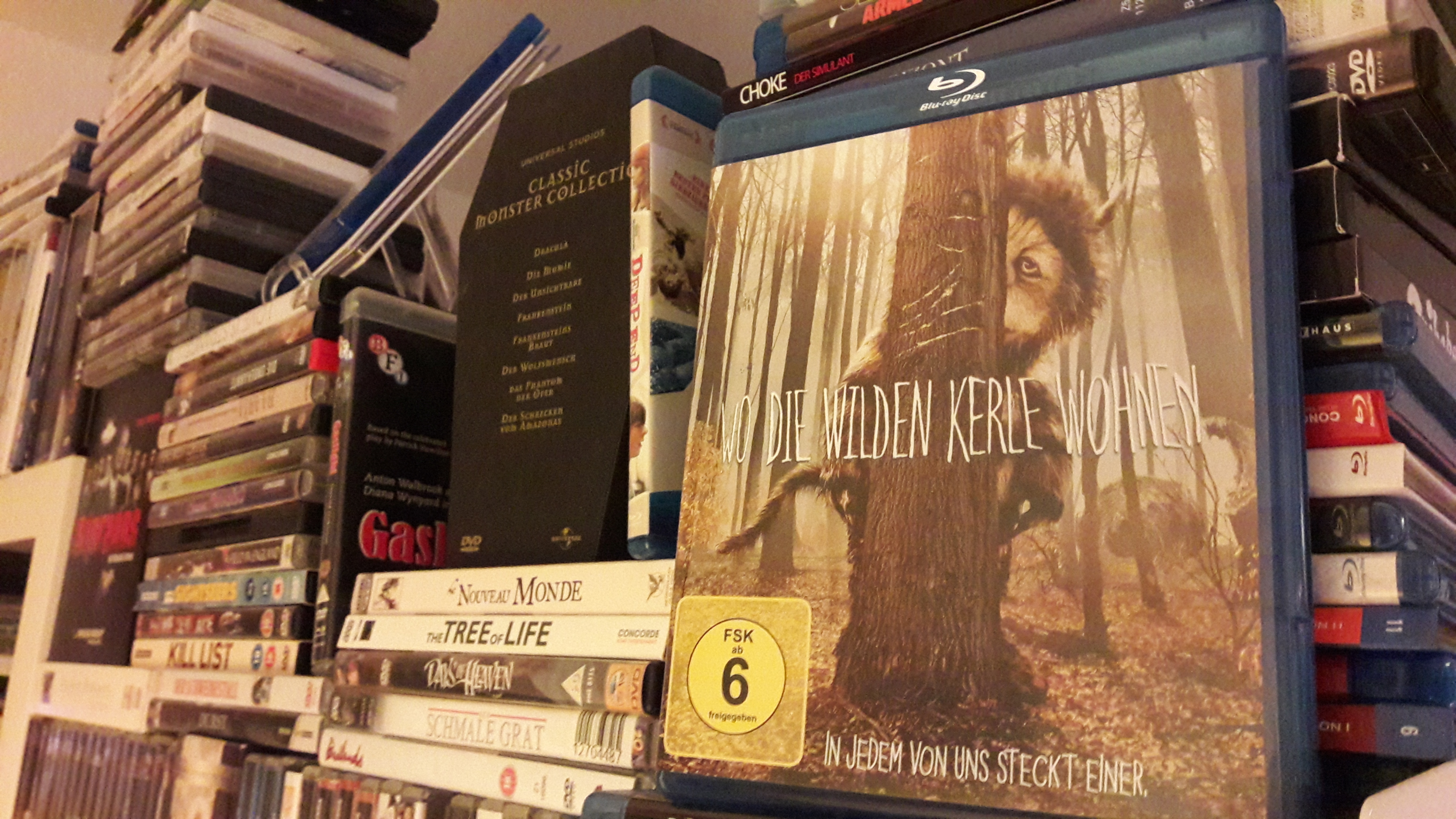 Eine Lanze für die Fantasie: Where the Wild Things Are