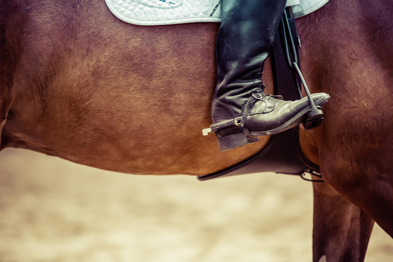 Marshal oder Rinderdieb? Teste Dein Western-Wissen